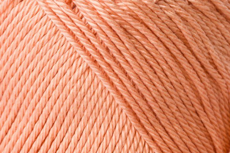 00401 aprikose
